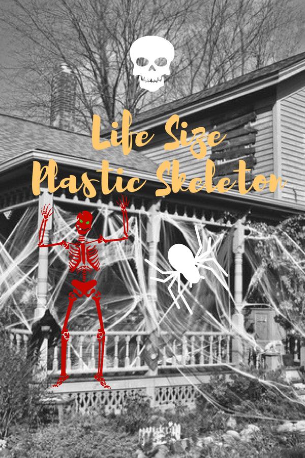 Life Size Plastic Skeleton Halloween