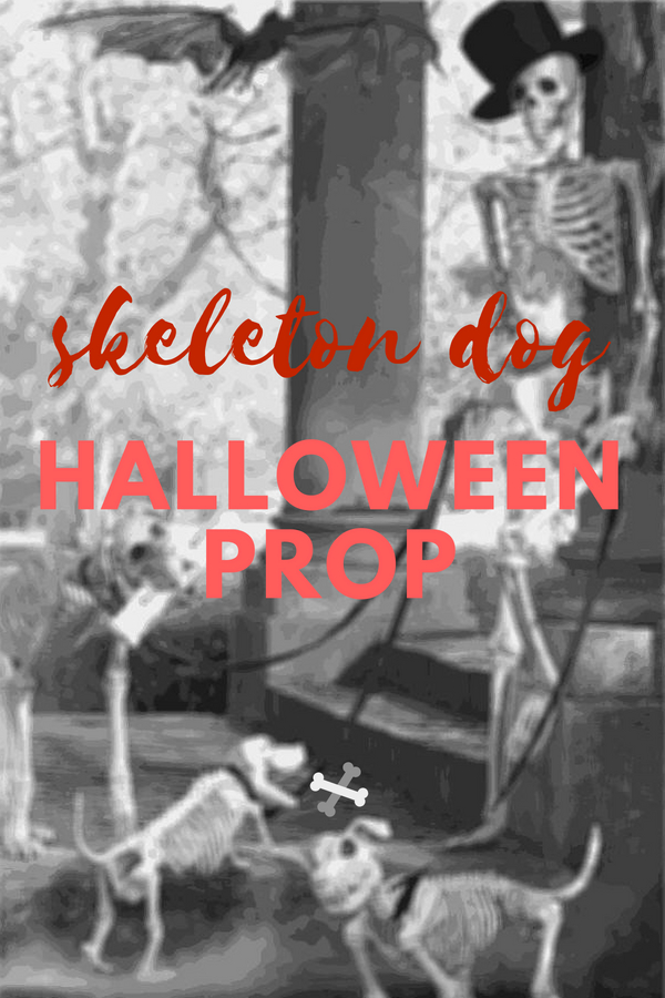 Skeleton Dog Halloween Prop